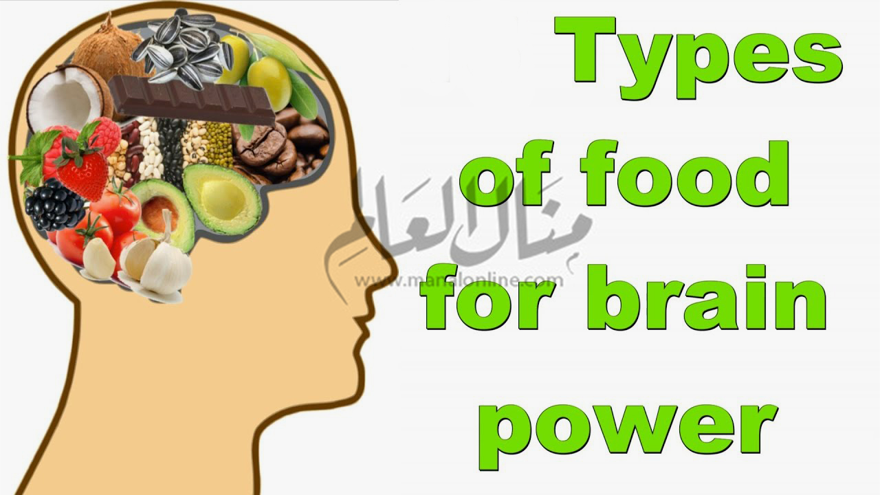 لتنشيط الذاكرة والمخ.. تناول هذه الأطعمة - المشاهدات : 82