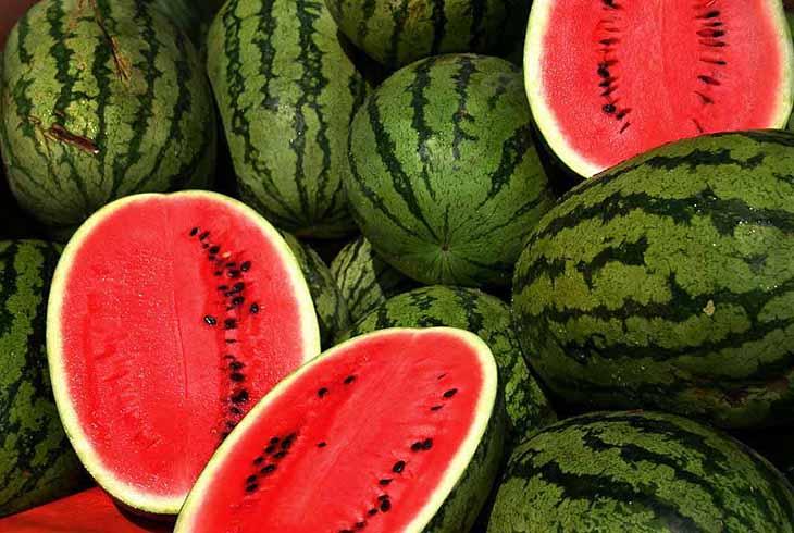 كيف تفرق بين البطيخ الناضج والغير ناضج؟ - المشاهدات : 1.18K