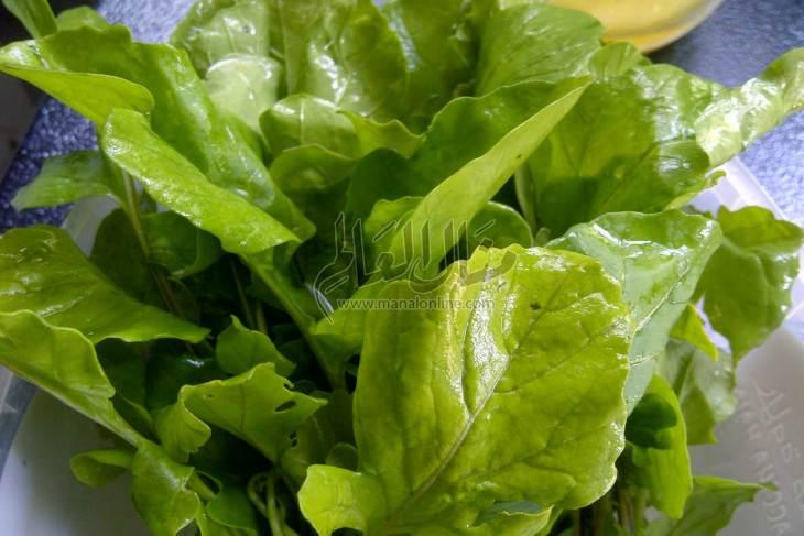 الجرجير نبات سحري تعرفه على فوائده - المشاهدات : 3.88K