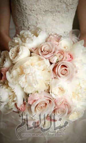 ياجمال الورد! وخاصةً إن كان ورد العروس-6