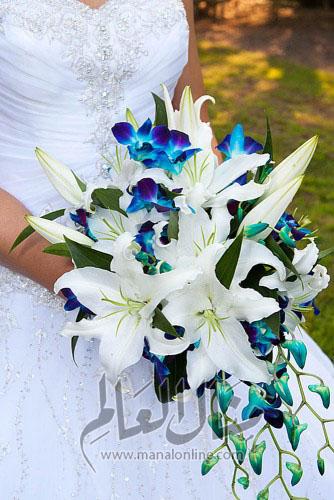 ياجمال الورد! وخاصةً إن كان ورد العروس-8