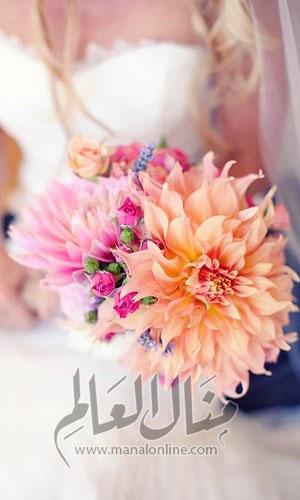 ياجمال الورد! وخاصةً إن كان ورد العروس-5