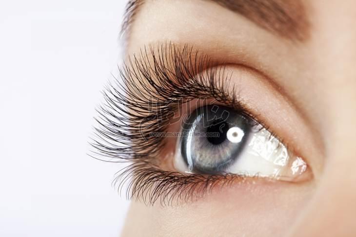 عدم نمو رموش العين: الأعراض والعلاج - المشاهدات : 1.03K
