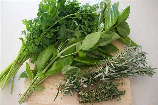 أفضل طرق لحفظ الخضروات الورقية طازجة - المشاهدات : 11K