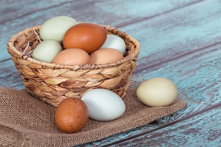 كيف تعرفين أن البيض طازج؟ - المشاهدات : 10.3K