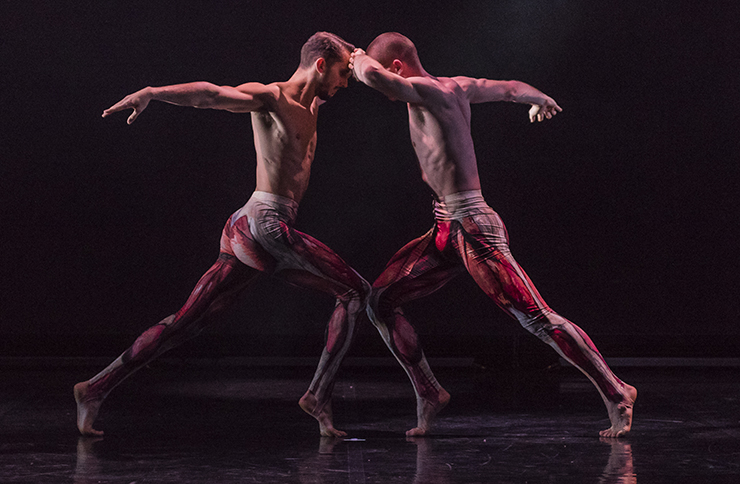 'Play to your strengths' Ballet Boyz Bradley and Harry share their dance journey so far