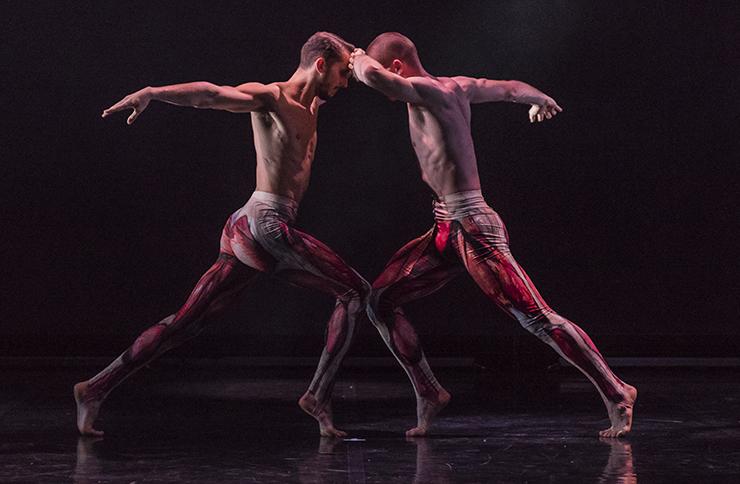 Ballet Boyz show