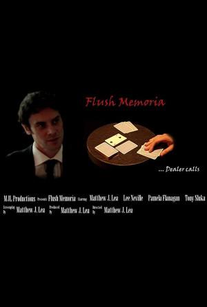 Flush Memoria