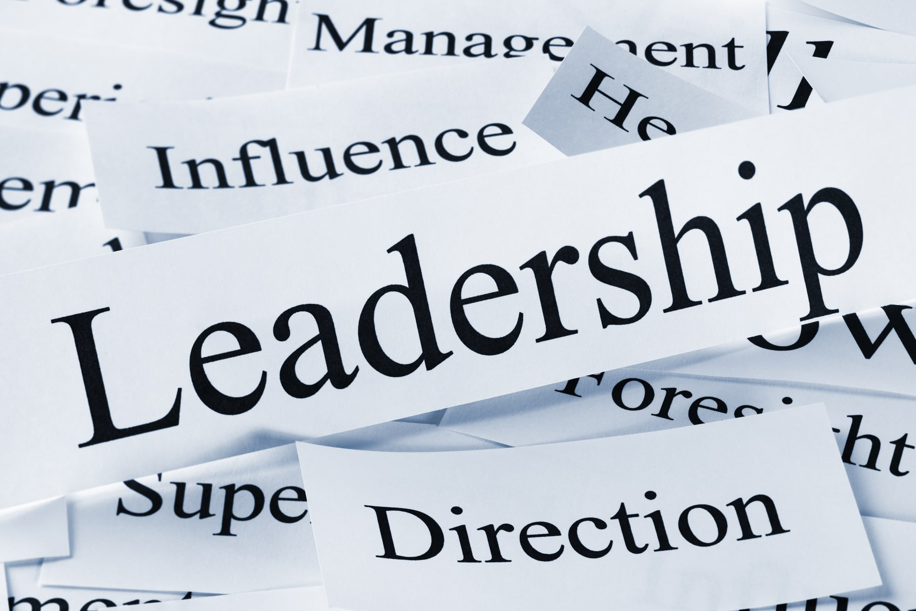 Ultimate Guide For Effective Leadership: Preface