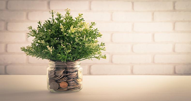 Ideas para iniciar un negocio con poco o sin dinero (I)
