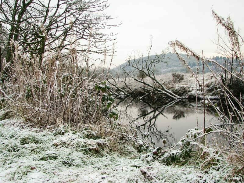 Excursion Glasgow Lago Lomond y Aberfoyle