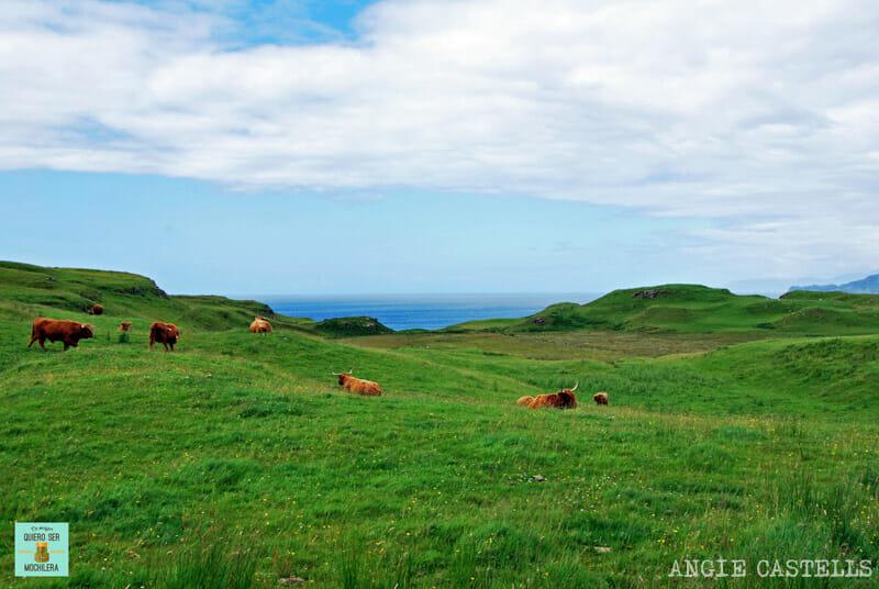 Rincones secretos Escocia Glengorm castle isla de Mull
