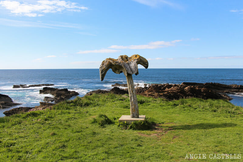 Ruta islas Orcadas Que ver en Orkney Skiba Geo Ballena