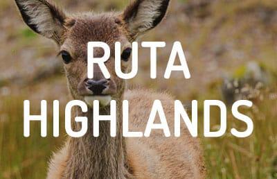 Ruta por las Highlands de Escocia en coche