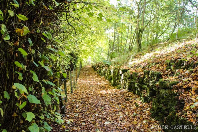 Las mejores excursiones para el otoño en Escocia - El castillo de Doune