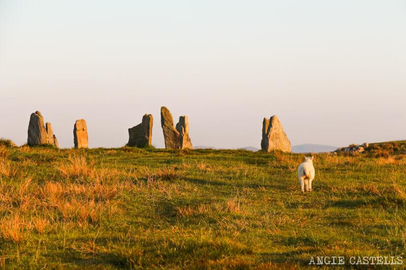 Ruta por la isla de Lewis y Harris - Las piedras de Callanish 2