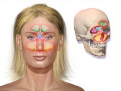 Cirugía endoscópica nasosinusal