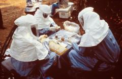 Epidemiólogos