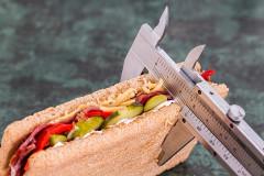 Dieta proteinada