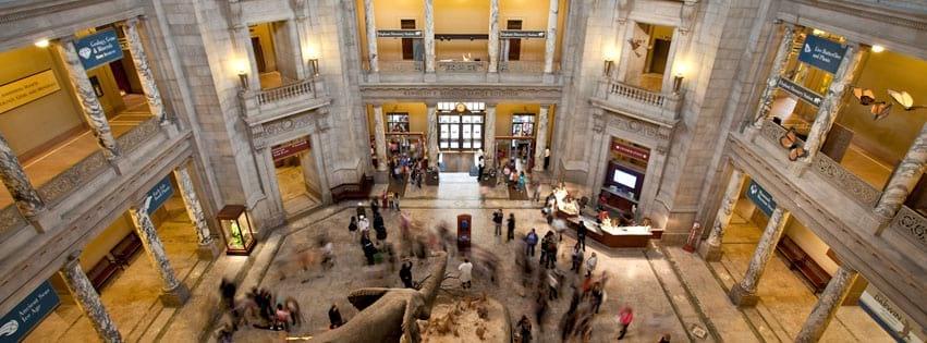когда в музее естественной истории в Вашингтоне нет очереде