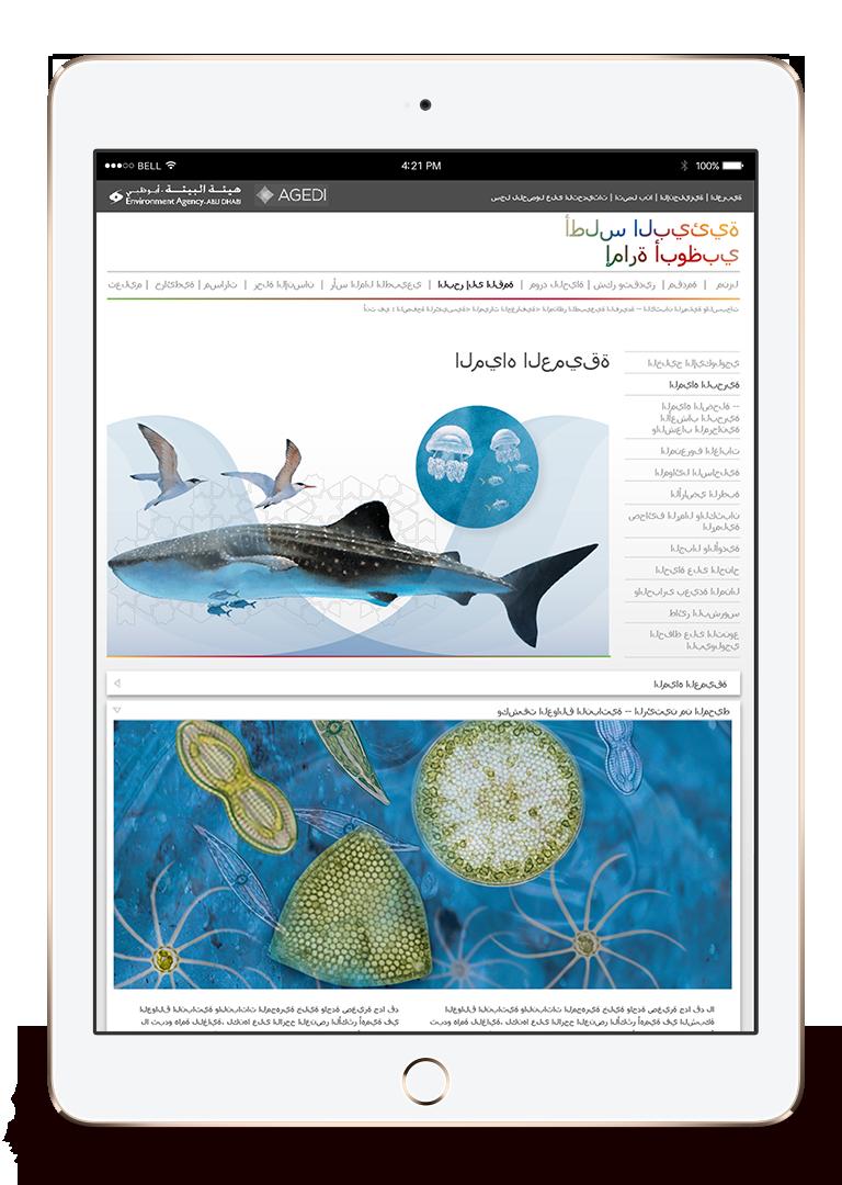 AGEDI Environmental Interactive Atlas