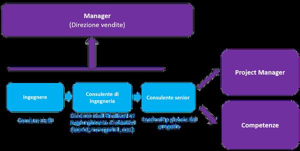 mca-recurtes-consultants-2-it