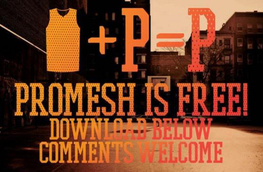 14-promesh