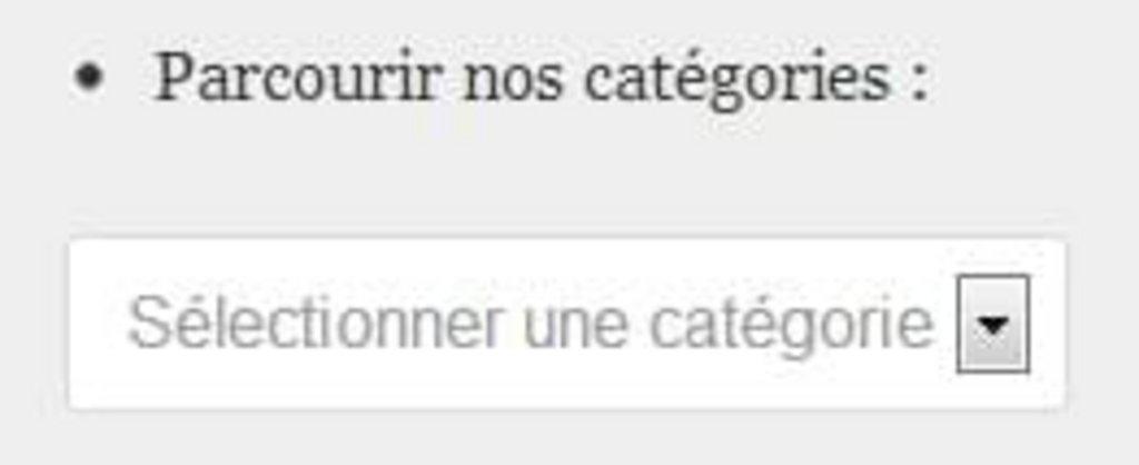 Page-introuvable-section-categories-Magazine-du-Webdesign