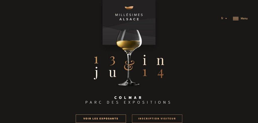 Salon Millésimes Alsace - 13 14 juin 2016   Web Design Inspiration – landing page