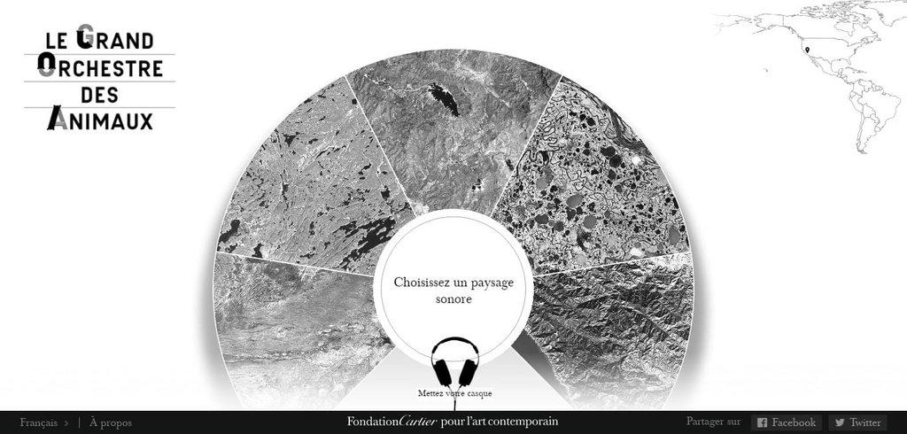 Exemple vidéo site Internet - Le grand orchestre des animaux