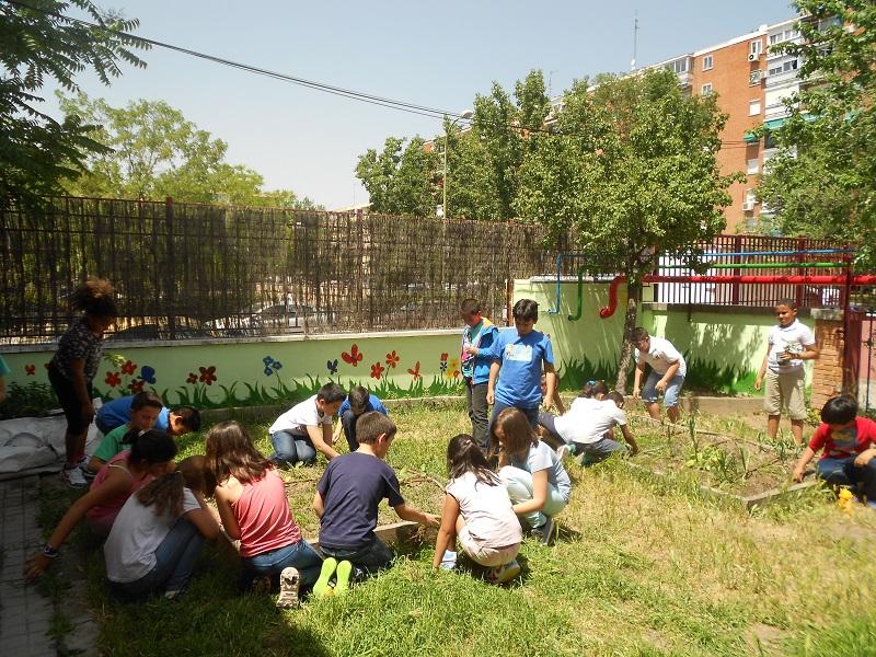 Huerto Ceip Ciudad de Badajoz