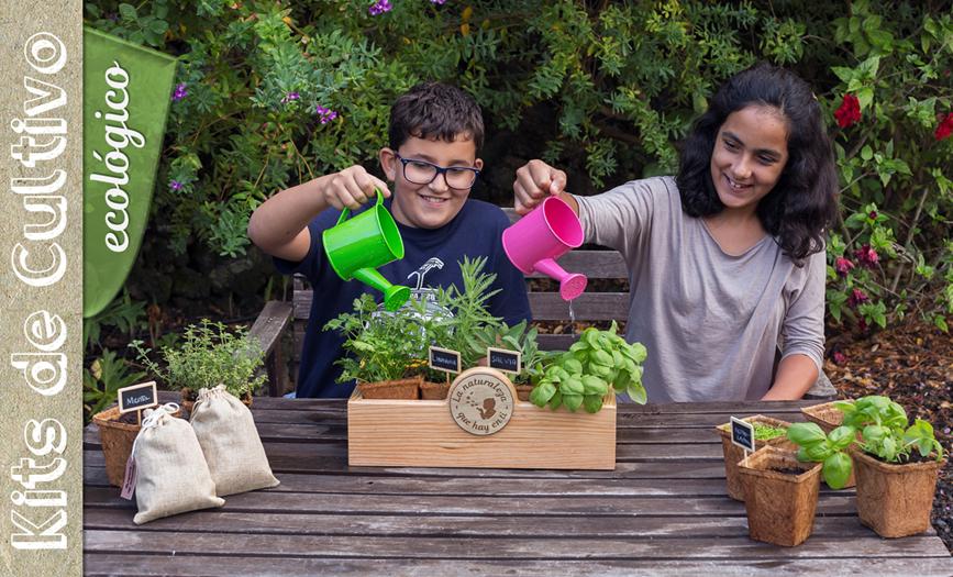Niños mayores con kit de cultivo