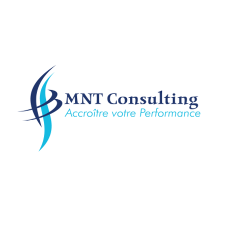 Offres de MNT Consulting au Cameroun