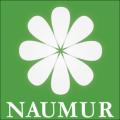 Offres de Cabinet Naumur au Cameroun