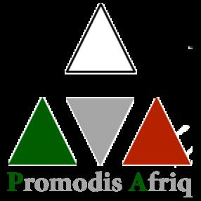 Offres de PROMODIS AFRIQ SA au Cameroun