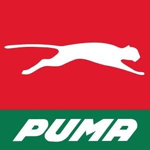 Puma Energy jobs in Tanzania