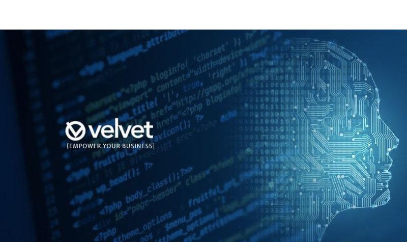 Velvet Consulting
