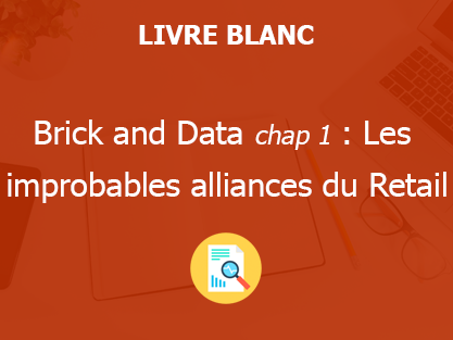 Brick and Data : chap 1 - Les improbables alliances du Retail