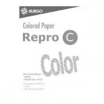 Carta a4 repro c color bianco - 250 fogli - 160 grammi