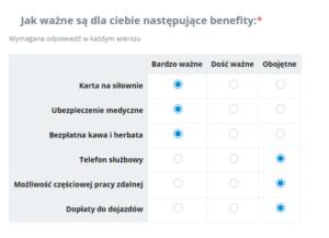 Ankiety_pracownicze_macierze_minusy_stosowania
