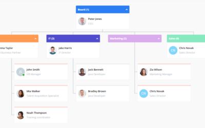 Struktura organizacyjna firmy