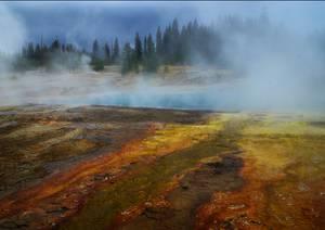 Lac brumeux en bordure de forêt
