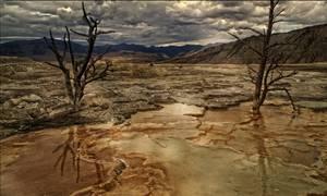 Décor désertique