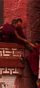 Moines tibétains s'aidant à monter un mur