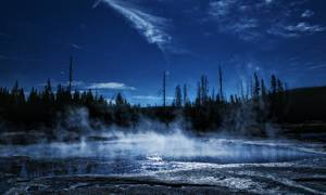 Forêt au bord d'un lac à l'aube