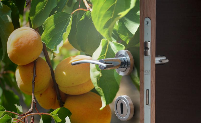 Adhésif pour porte : adhésif thème fruits