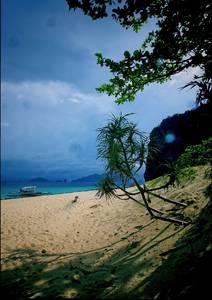Bateau amarré sur une plage déserte