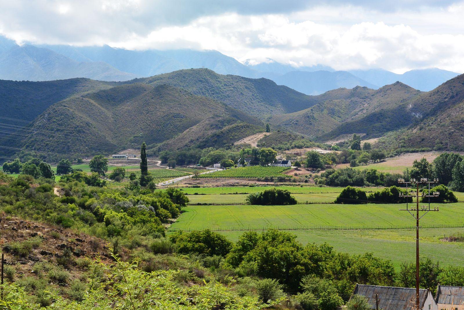 Selfdrive autorondreizen in Zuid-Afrika populair | AmbianceTravel