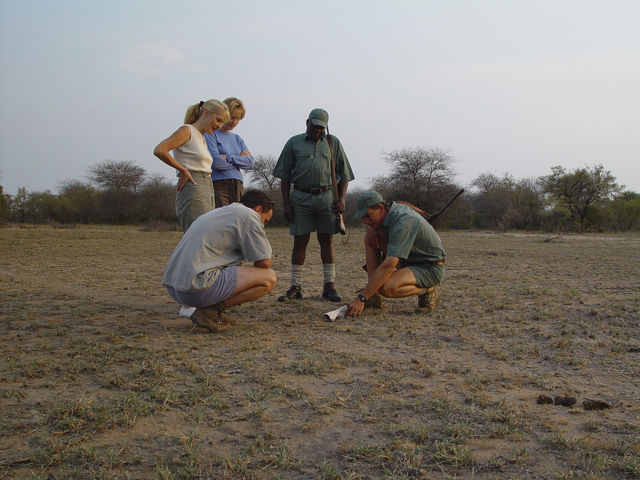rondreis zuid-afrika wandelsafari Kruger Park Plains Camp