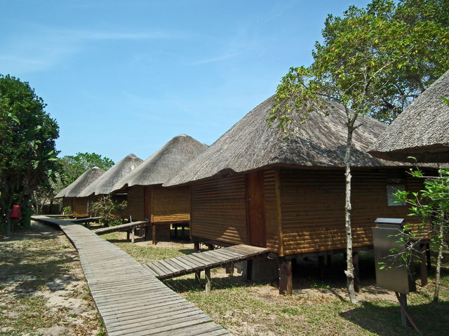 Wildlife, wetlands & beach in het oosten van Zuid-Afrika | AmbianceTravel